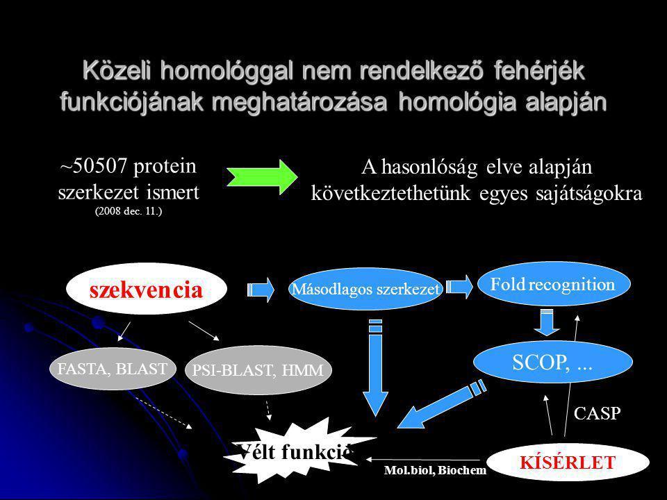 Közeli homológgal nem rendelkező fehérjék funkciójának meghatározása homológia alapján