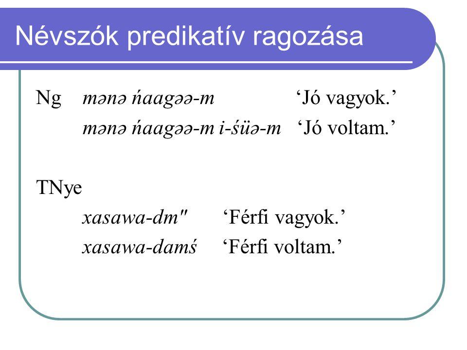 Névszók predikatív ragozása