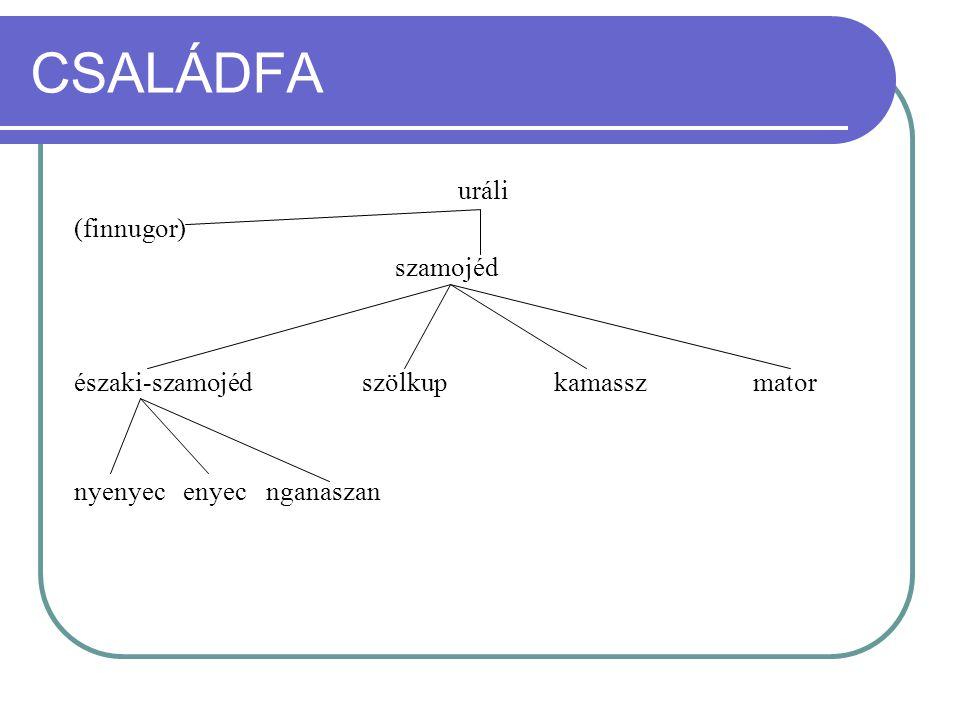 CSALÁDFA uráli (finnugor) szamojéd