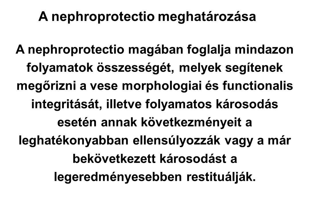 A nephroprotectio meghatározása