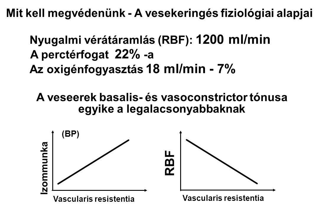 RBF Mit kell megvédenünk - A vesekeringés fiziológiai alapjai