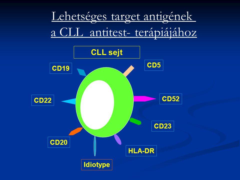 Lehetséges target antigének a CLL antitest- terápiájához