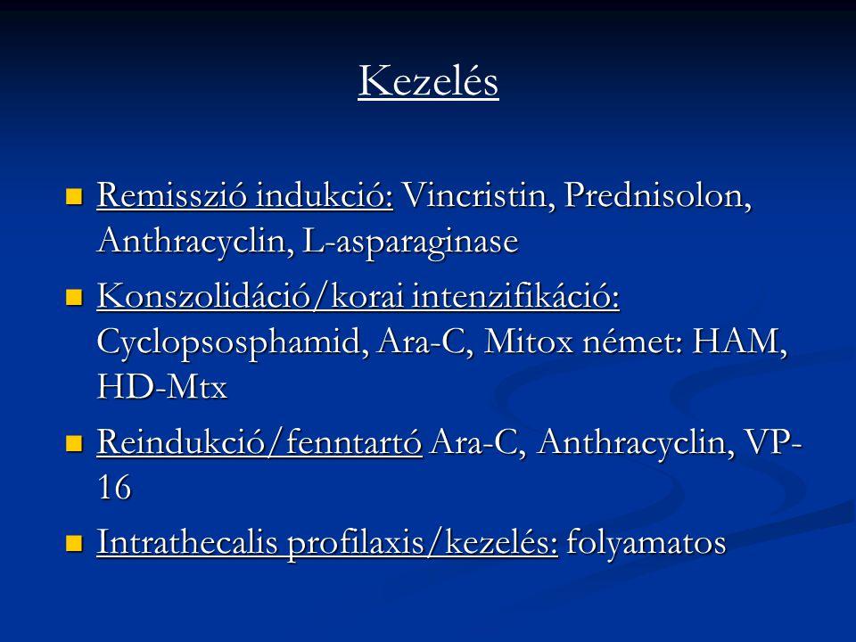 Kezelés Remisszió indukció: Vincristin, Prednisolon, Anthracyclin, L-asparaginase.