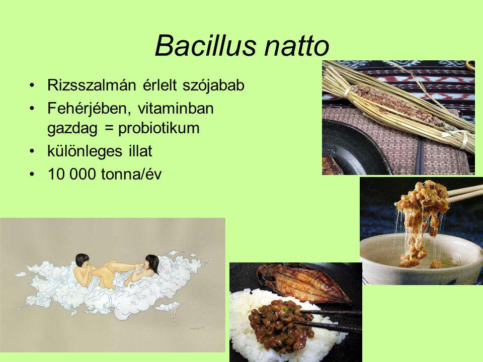 Bacillus natto Rizsszalmán érlelt szójabab