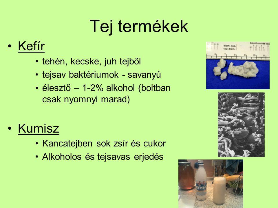 Tej termékek Kefír Kumisz tehén, kecske, juh tejből