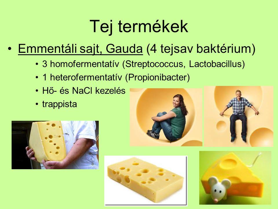 Tej termékek Emmentáli sajt, Gauda (4 tejsav baktérium)