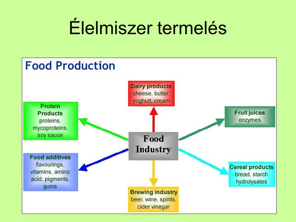 Élelmiszer termelés