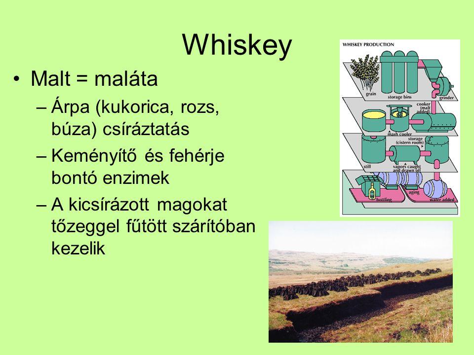 Whiskey Malt = maláta Árpa (kukorica, rozs, búza) csíráztatás