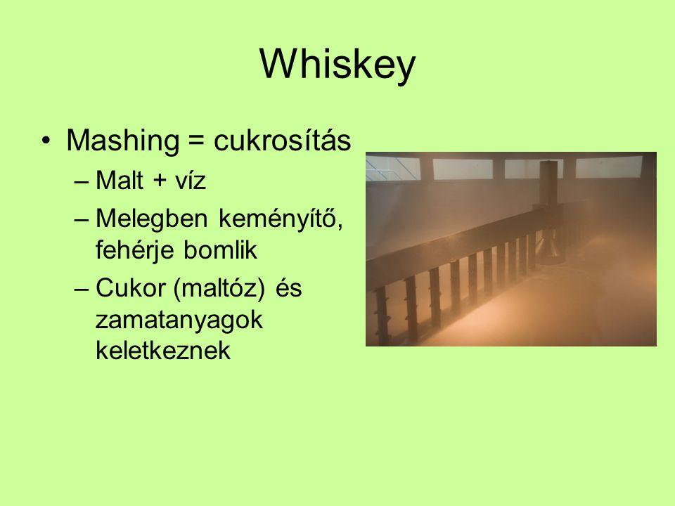 Whiskey Mashing = cukrosítás Malt + víz
