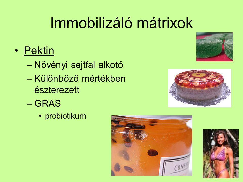 Immobilizáló mátrixok