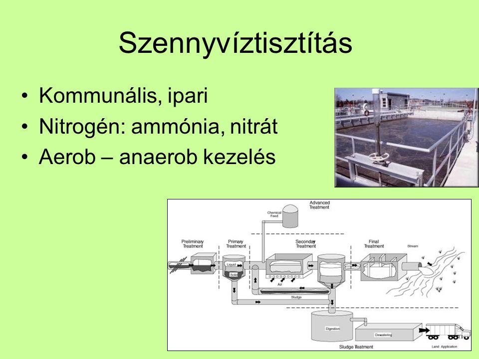 Szennyvíztisztítás Kommunális, ipari Nitrogén: ammónia, nitrát