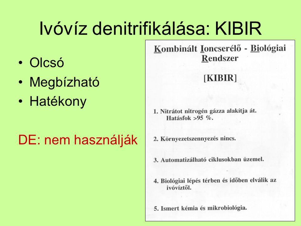 Ivóvíz denitrifikálása: KIBIR