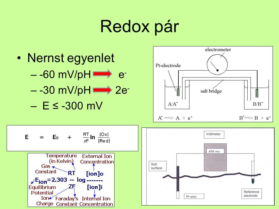 Redox pár Nernst egyenlet -60 mV/pH e- -30 mV/pH 2e- E ≤ -300 mV