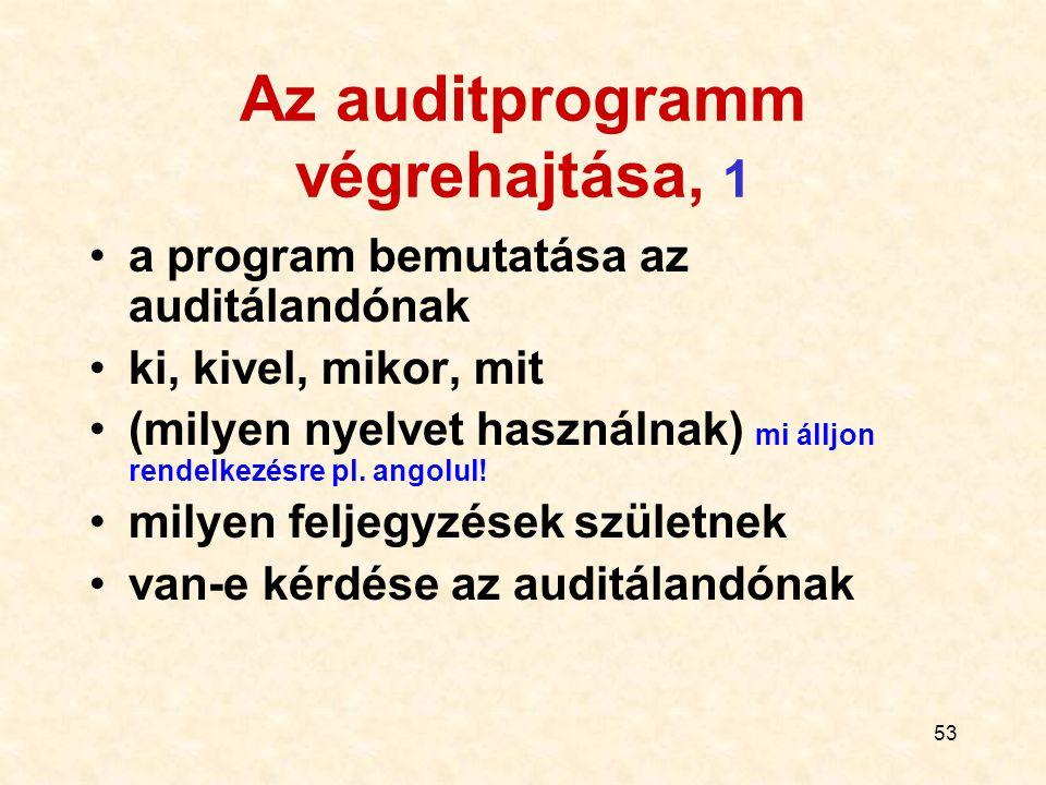Az auditprogramm végrehajtása, 1