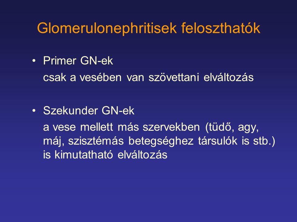 Glomerulonephritisek feloszthatók