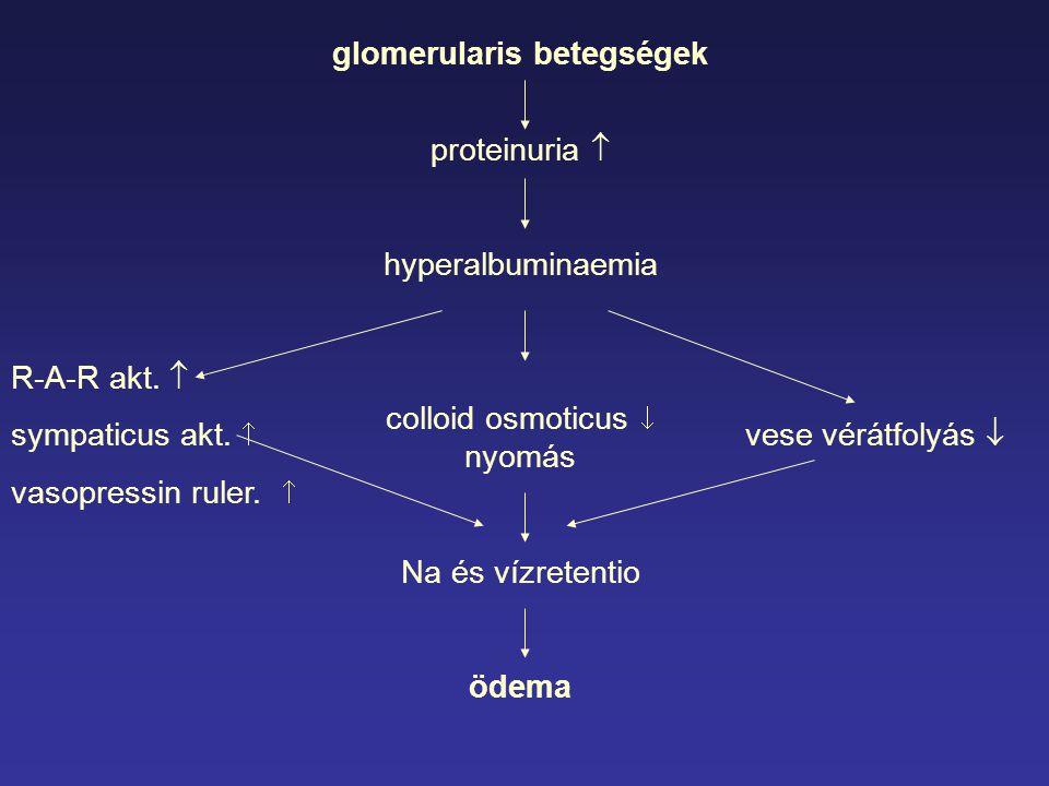 glomerularis betegségek