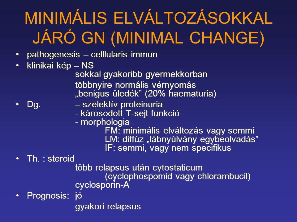 MINIMÁLIS ELVÁLTOZÁSOKKAL JÁRÓ GN (MINIMAL CHANGE)