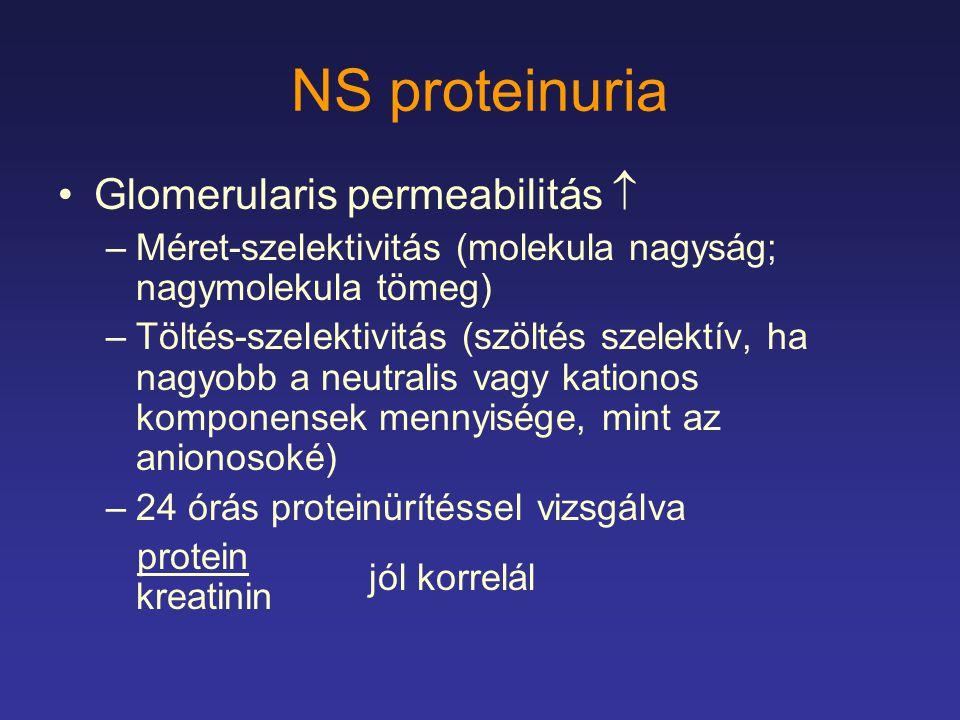 NS proteinuria Glomerularis permeabilitás 