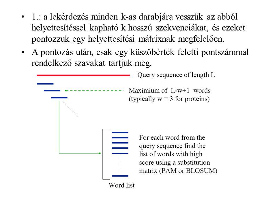 1.: a lekérdezés minden k-as darabjára vesszük az abból helyettesítéssel kapható k hosszú szekvenciákat, és ezeket pontozzuk egy helyettesítési mátrixnak megfelelően.
