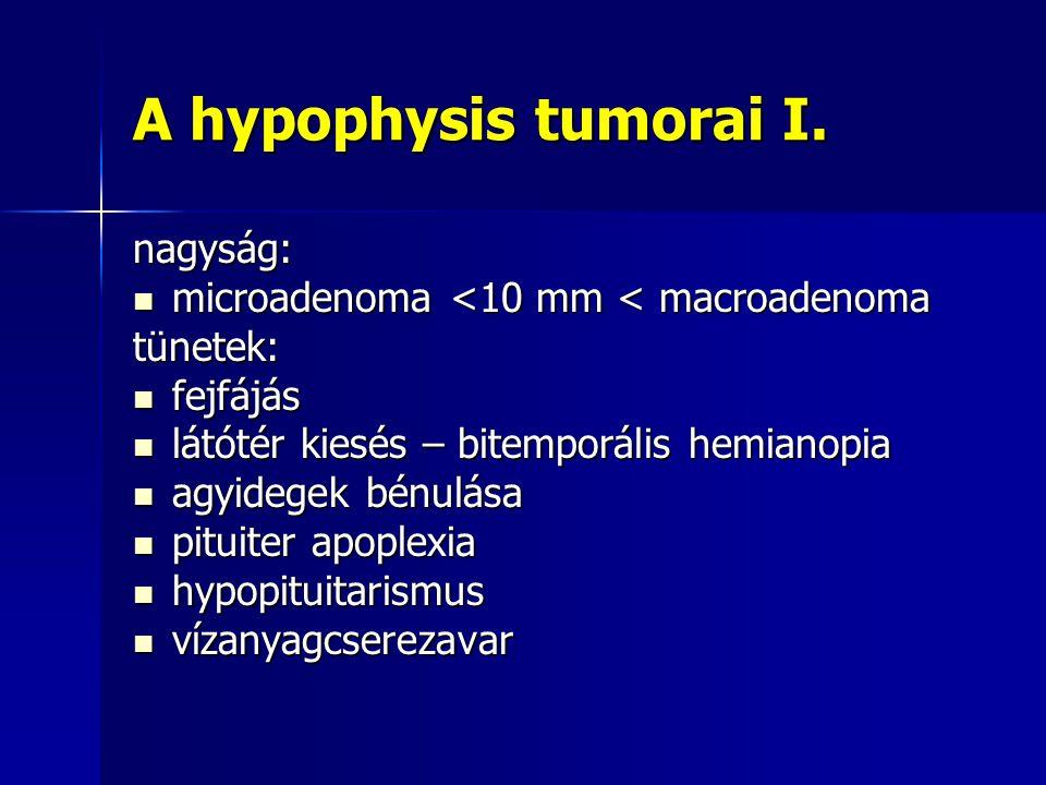 A hypophysis tumorai I. nagyság: