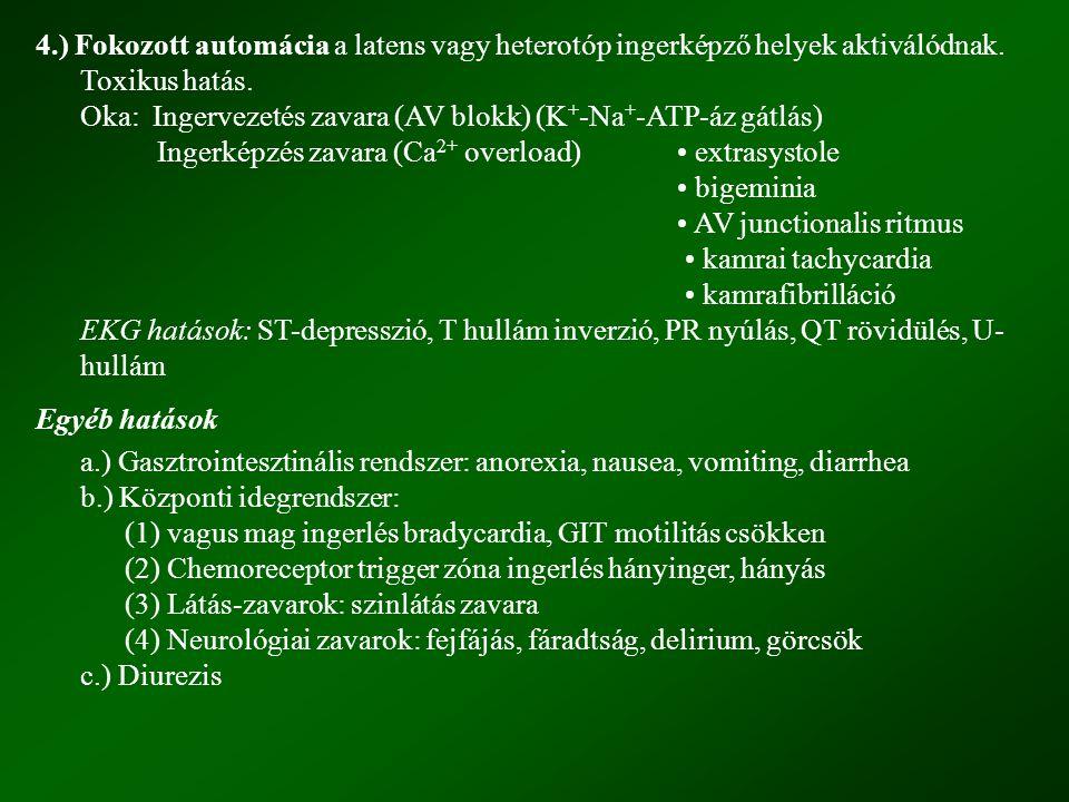 4.) Fokozott automácia a latens vagy heterotóp ingerképző helyek aktiválódnak. Toxikus hatás.