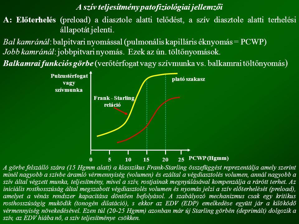 A szív teljesítmény patofiziológiai jellemzői