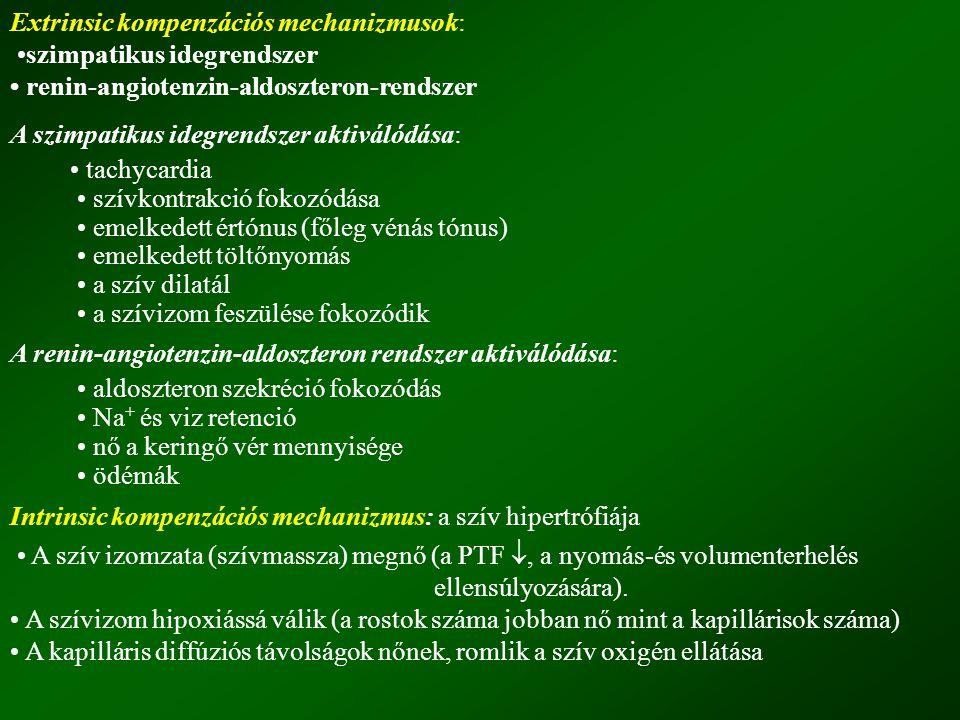 Extrinsic kompenzációs mechanizmusok: