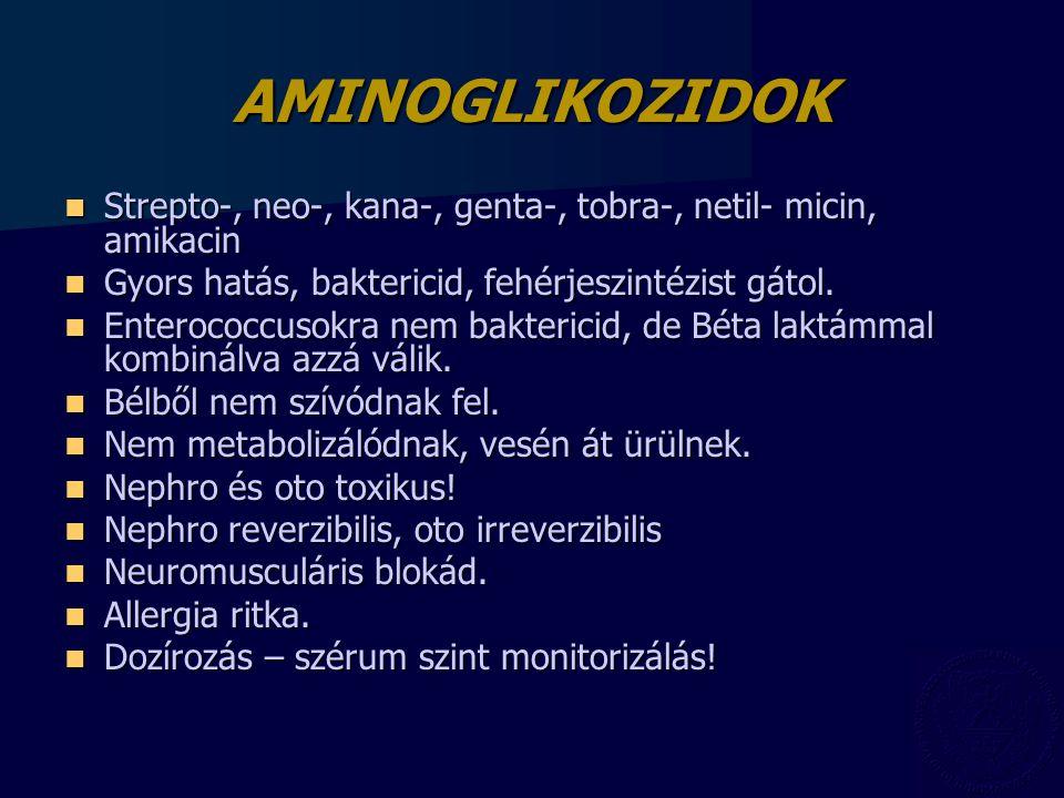 AMINOGLIKOZIDOK Strepto-, neo-, kana-, genta-, tobra-, netil- micin, amikacin. Gyors hatás, baktericid, fehérjeszintézist gátol.