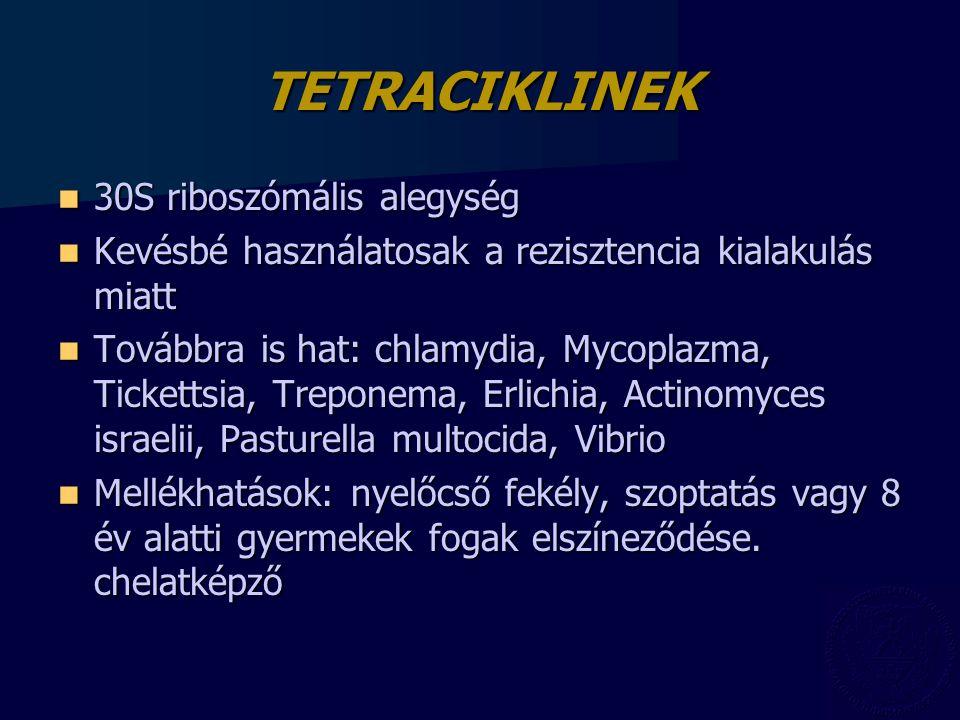 TETRACIKLINEK 30S riboszómális alegység
