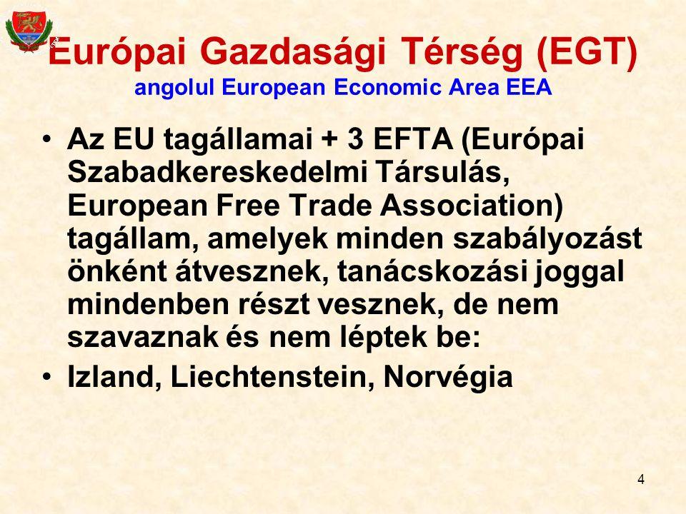 Európai Gazdasági Térség (EGT) angolul European Economic Area EEA
