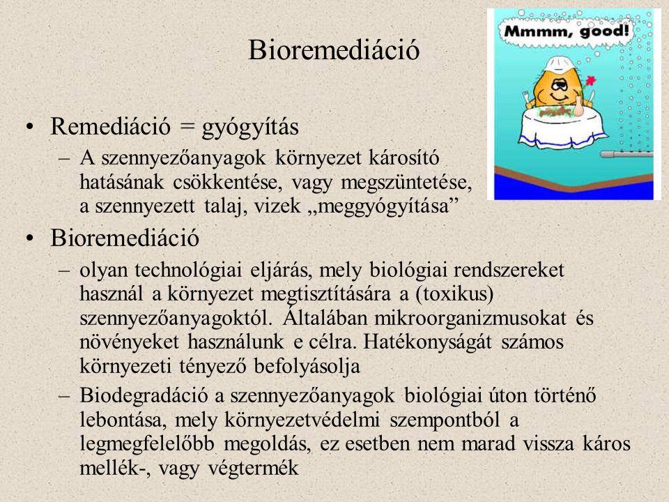 Bioremediáció Remediáció = gyógyítás Bioremediáció
