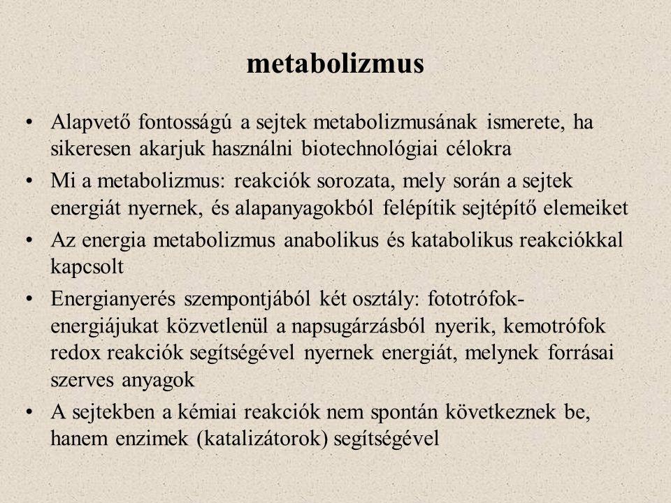 metabolizmus Alapvető fontosságú a sejtek metabolizmusának ismerete, ha sikeresen akarjuk használni biotechnológiai célokra.