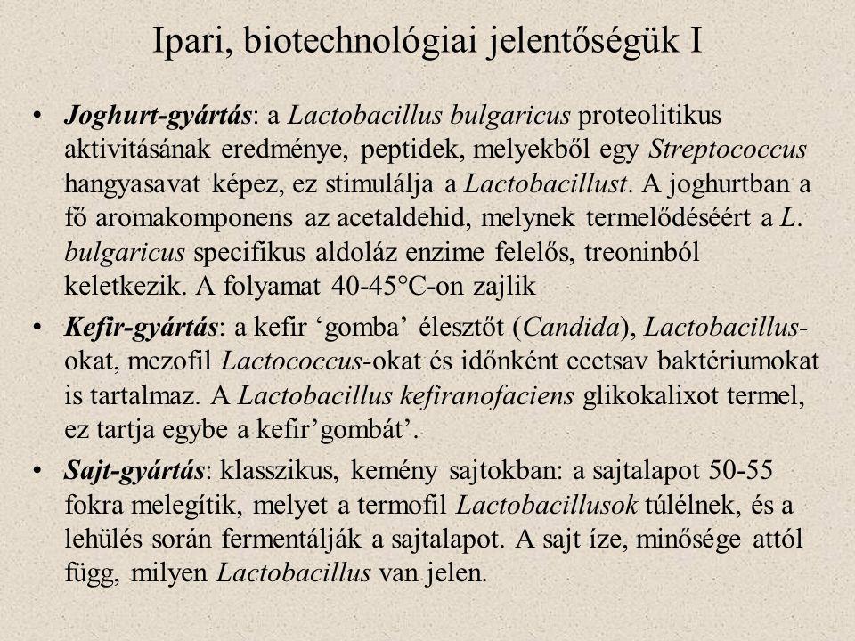 Ipari, biotechnológiai jelentőségük I