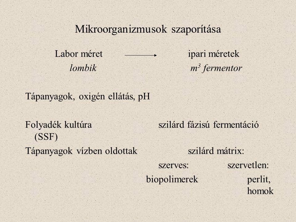 Mikroorganizmusok szaporítása