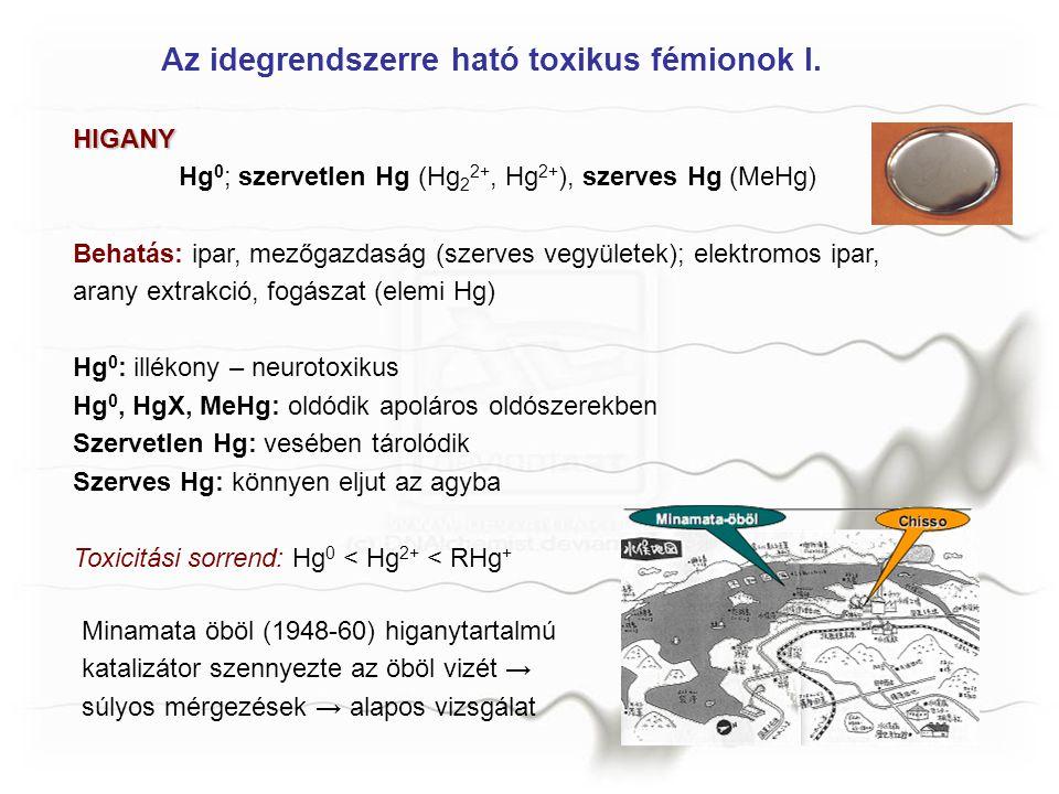 Az idegrendszerre ható toxikus fémionok I.