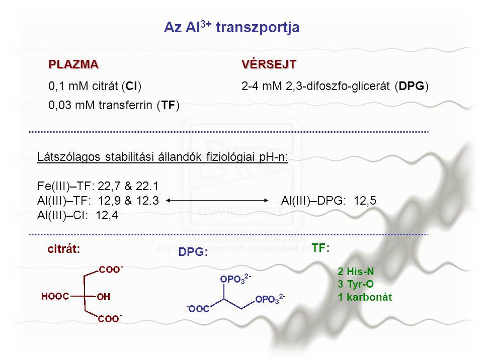 Az Al3+ transzportja PLAZMA VÉRSEJT