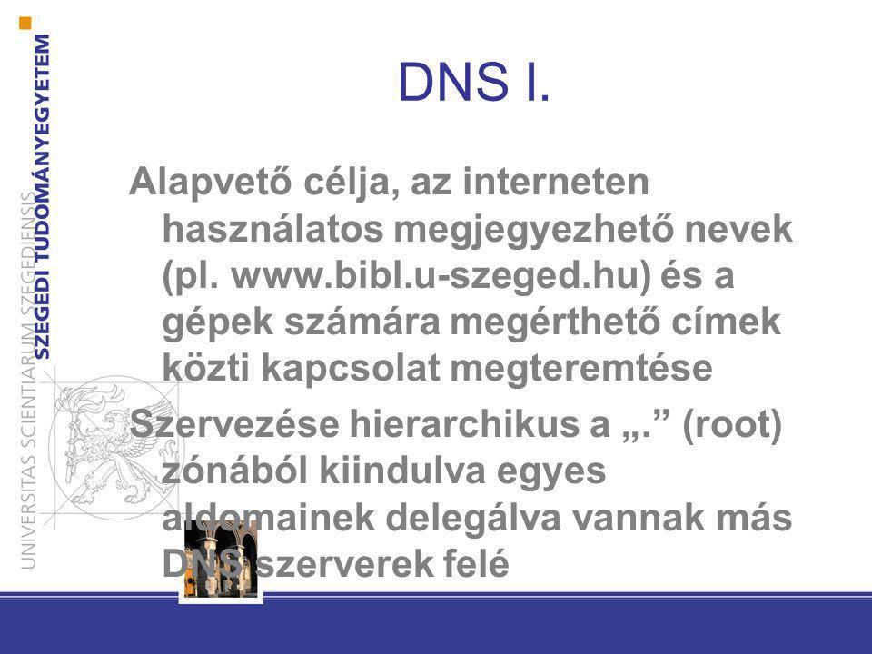 DNS I.