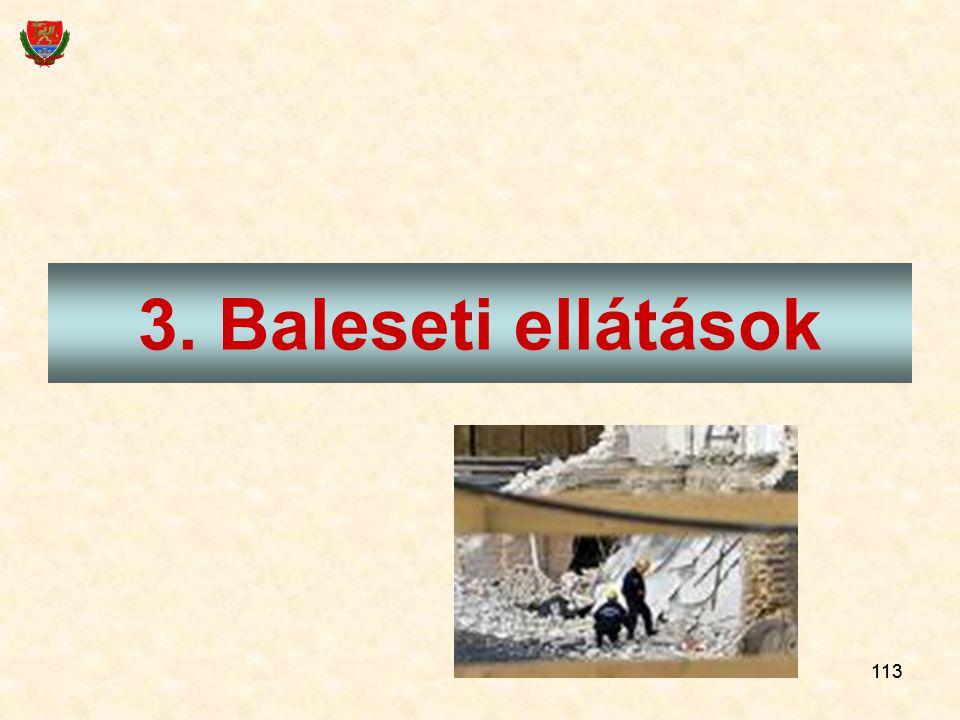 3. Baleseti ellátások 113