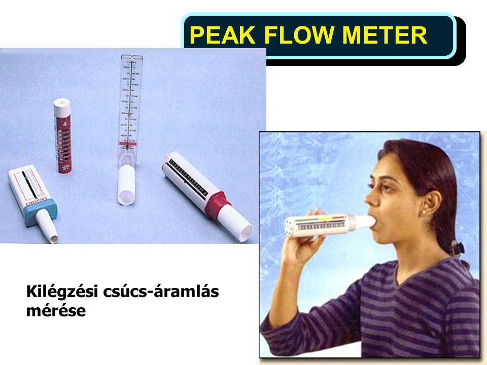 12 PEAK FLOW METER Kilégzési csúcs-áramlás mérése
