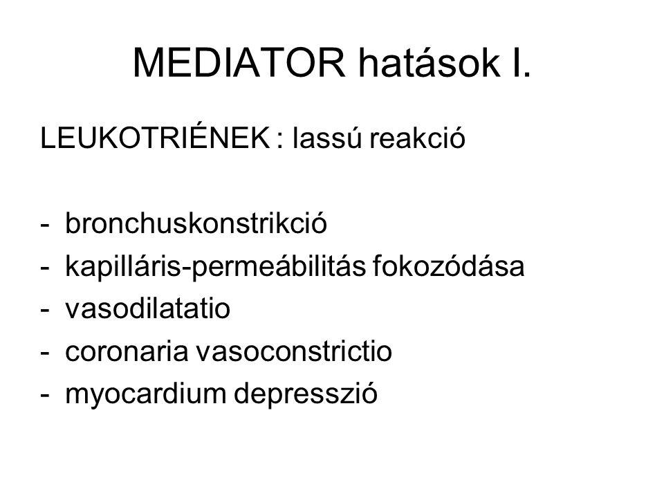 MEDIATOR hatások I. LEUKOTRIÉNEK : lassú reakció bronchuskonstrikció