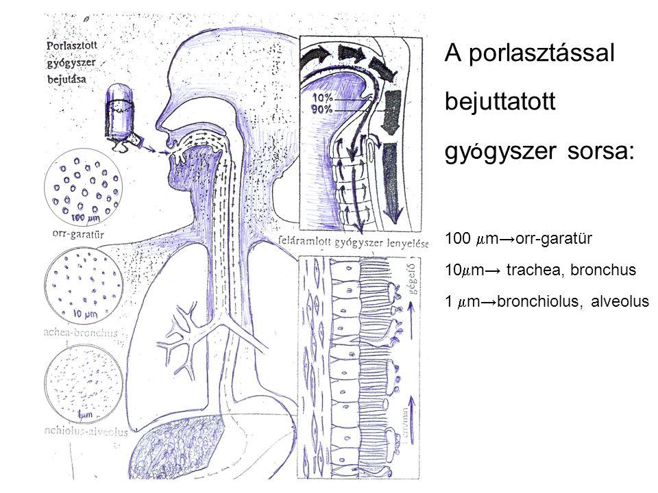 A porlasztással bejuttatott gyÓgyszer sorsa: 100 mm→orr-garatür 10mm→ trachea, bronchus 1 mm→bronchiolus, alveolus