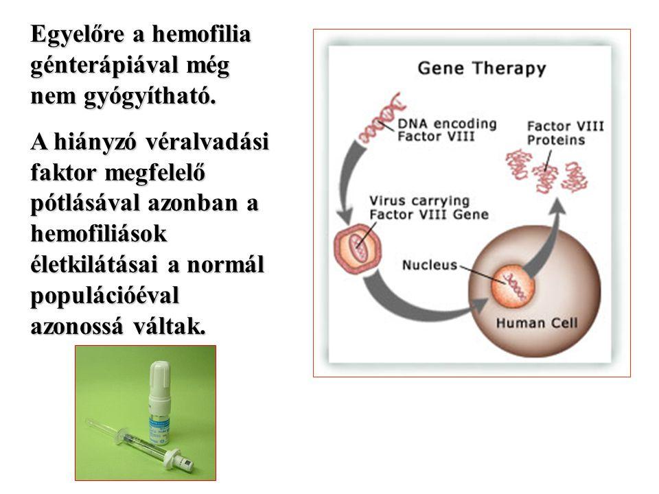 Egyelőre a hemofilia génterápiával még nem gyógyítható.
