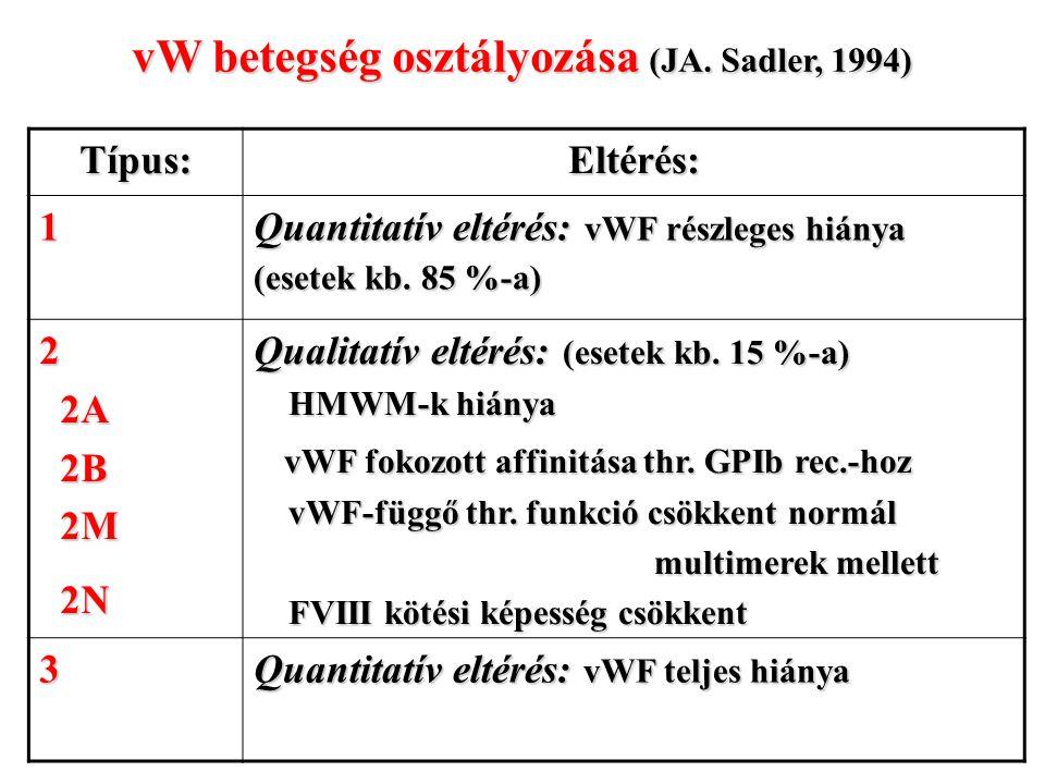 vW betegség osztályozása (JA. Sadler, 1994)