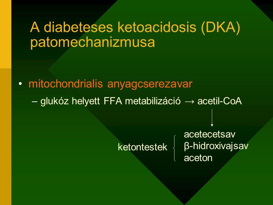 A diabeteses ketoacidosis (DKA) patomechanizmusa
