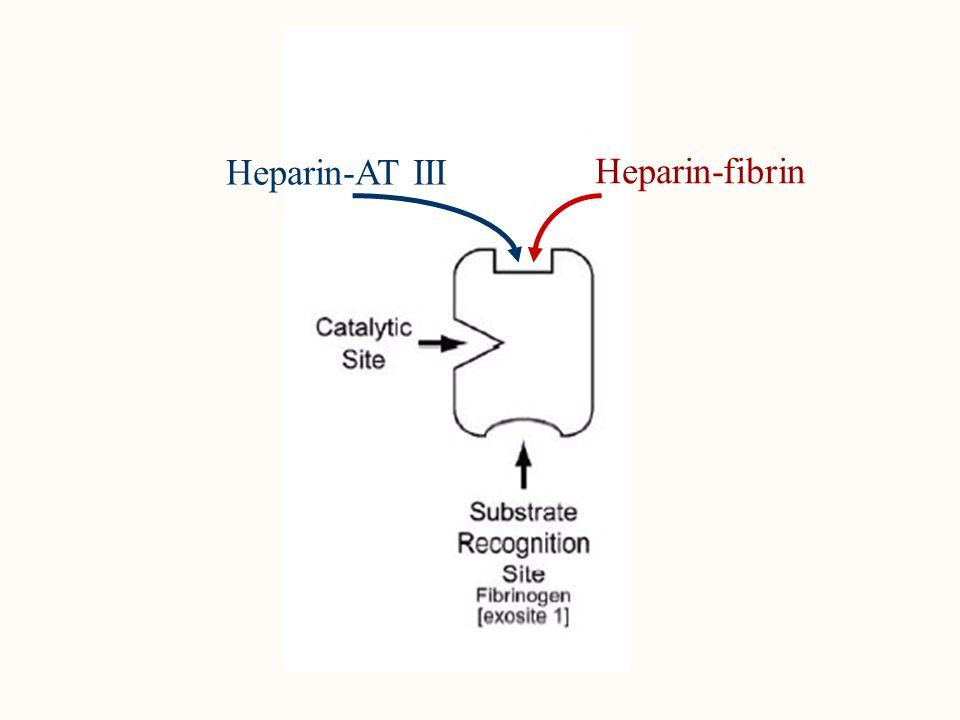 Heparin-AT III Heparin-fibrin