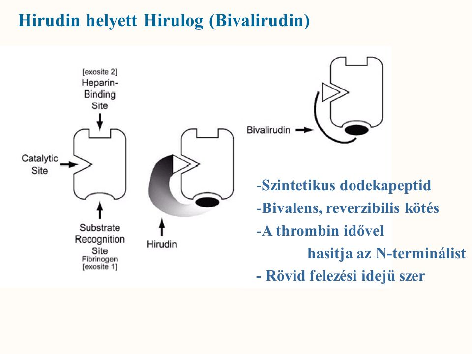 Hirudin helyett Hirulog (Bivalirudin)
