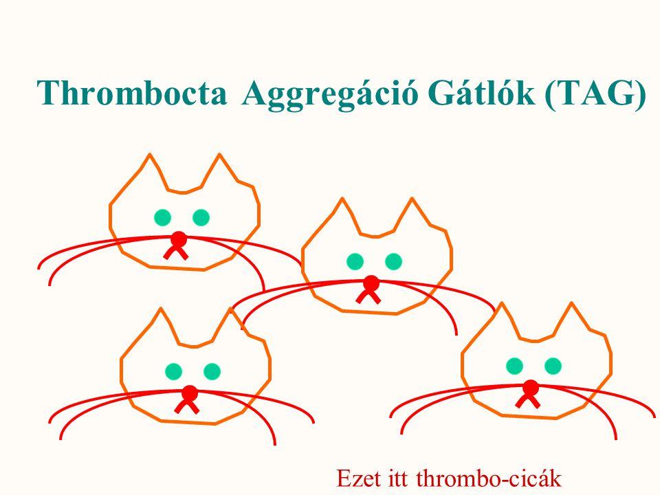 Thrombocta Aggregáció Gátlók (TAG)