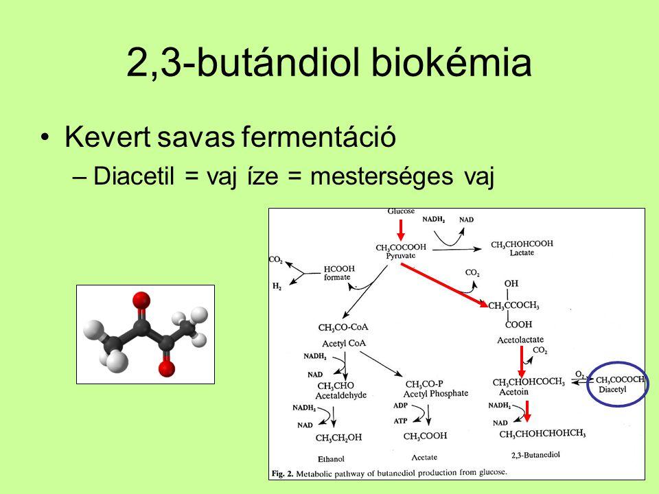 2,3-butándiol biokémia Kevert savas fermentáció