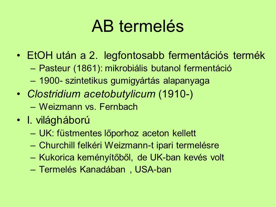 AB termelés EtOH után a 2. legfontosabb fermentációs termék