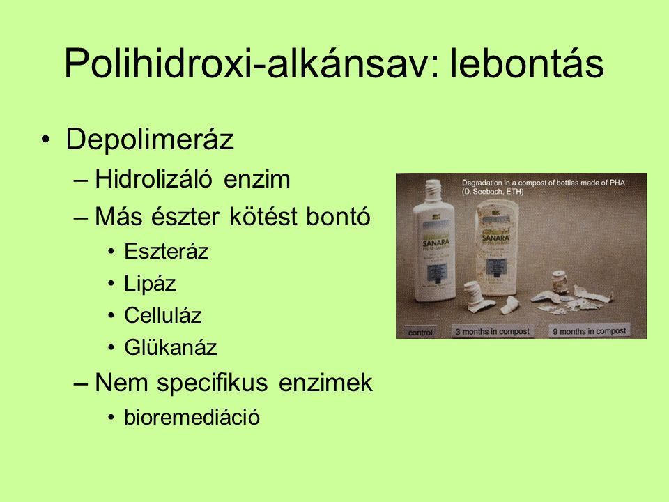 Polihidroxi-alkánsav: lebontás